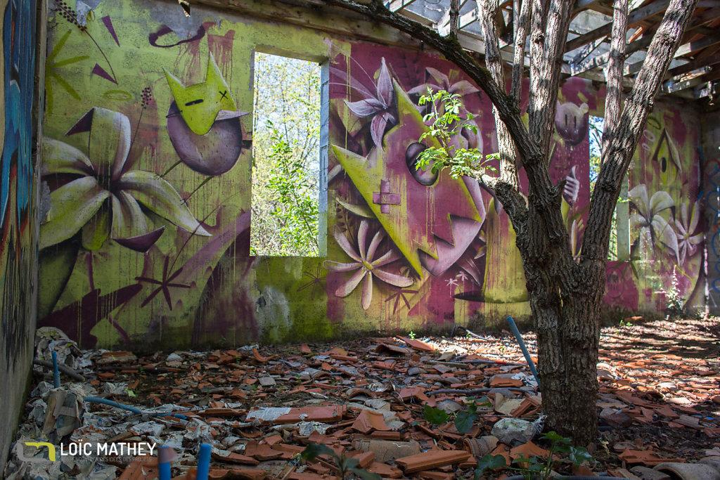 20190324_Urbex Chartreuse de Bel Sito